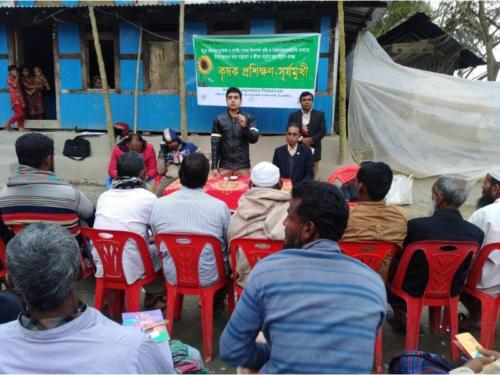 January 20Training on sunflower for   farmers under VCD project Barguna n